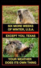 ground hog texas meme